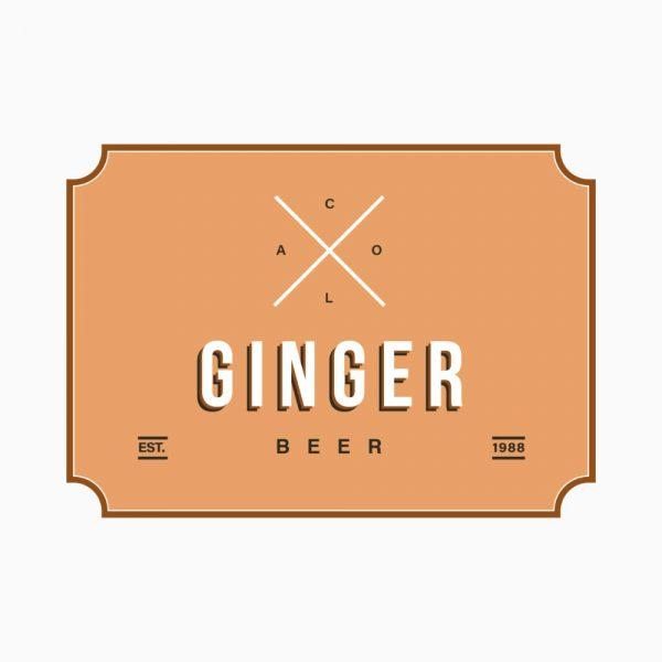Swallo Drinks Ginger Beer