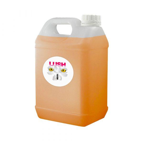 Orange & Mango Lush Slush
